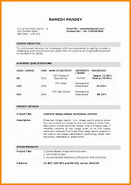Sap Mm Fresher Resume Format Beautiful Sap Resume Fico Free