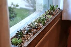 Kitchen Window Garden Windowsill Succulent Garden Gardens Belle And Planters