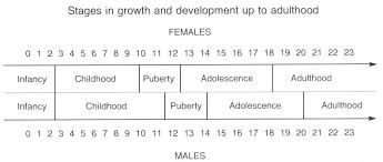Child Development Stages Chart 0 19 Growth And Development