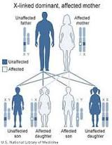 Ancient Giants' Genes In Our Gene Pool? | Paranormal