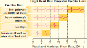 Optimal Heart Rate Chart Solved The Maximum Heart Rate In Beats Per Minute That
