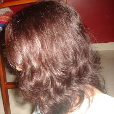 l oreal professionnel inoa hair colour