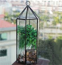 hexagonal hanging glass garden terrarium plant holder terrarium house geometric terrarium for indoor gardening