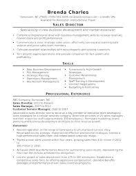Digital Marketing Director Job Description Template Manager And