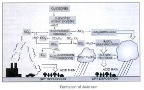 essay on air pollution sources causes effects and control formation of acid rain