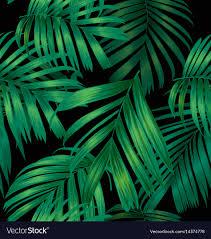 Palm Leaf Pattern Interesting Palm Leaf Pattern Royalty Free Vector Image VectorStock