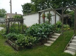 terraced vegetable garden terrace home garden landscaping ideas for vegetable terrace vegetable garden in chennai