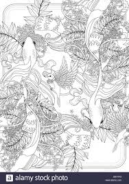 graceful goldfish swim underwater - adult coloring page Stock ...