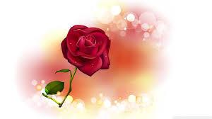 valentine roses wallpaper. Fine Valentine Valentine Rose Wallpaper Httpwwwnicewallpapersinwallpapervalentine Rosewallpaper Throughout Roses N