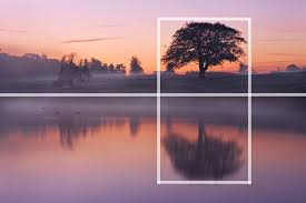 Image result for Tutorials Creating Photographic Composition Photography