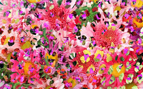 Flower Colorful Iphone Wallpaper Tumblr ...