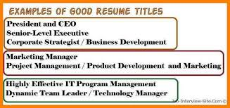 cv title examples 8 example of resume title inta cf