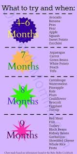 Van De Zwaan Feeding Chart Homemade Baby Food One Nerdy Momma Baby Food Recipes