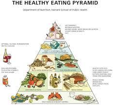 food pyramid 2014. Brilliant Food Food Pyramid For Pyramid 2014