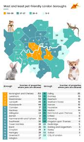 Most Popular Pets The Most And Least Pet Friendly London Boroughs