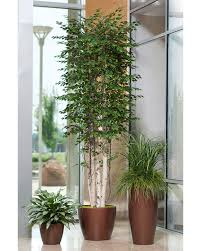 rollover to zoom click image to enlarge artificial plants for office decor