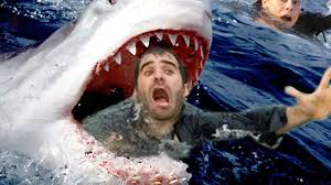 great white sharks eating people alive. Simple White Teacher Gets Eaten Alive By Great White Shark For Sharks Eating People YouTube