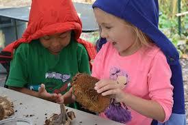 The Herman's Garden Program: Spreading the Joy of Gardening — Seed Savers  Exchange Blog
