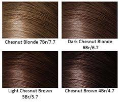 Chestnut Hair Colour Chart Chestnut Color Hair Color Chart Find Your Perfect Hair Style