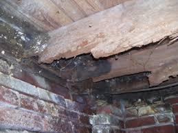 structural floor wood repair american