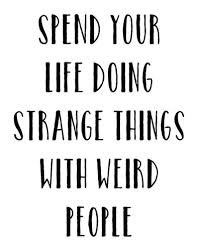 40 Electrifying And Funny Adventure Quotes EnkiQuotes Amazing Quotes On Adventure