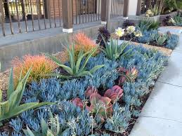 Small Picture 91 best Drought Tolerant Gardens images on Pinterest Landscaping