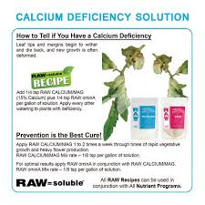 Raw Recipe Proven Solutoins By Npk Industries