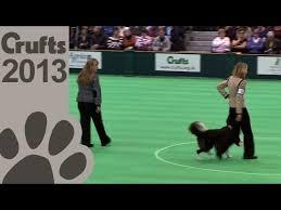 Obedience Dog Championships - Day 3 - Crufts 2013 (Lorna Hilton ...