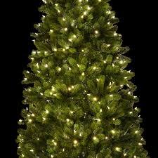480 Christmas Tree Lights 7 5 Royal Fir Slim Quick Shape Artificial Christmas Tree With 650 Warm White Multi Color Color Led Lights