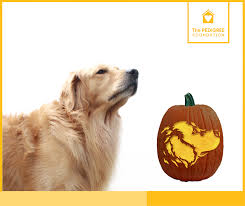 pumpkin carving stencils dog. puppy pumpkin carving stencils dog