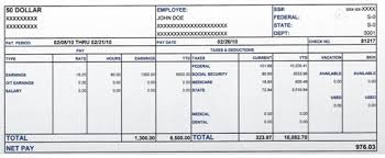 Fake Pay Stub Template Simple Template How To Create