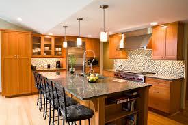 Contemporary Kitchen Cabinet Doors 18 Stunning Kitchen Cabinet Door Style Ideas Chloeelan