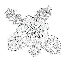 Hibiscus Flower Coloring Pages Hibiscus Coloring Page Hibiscus