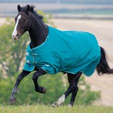 Shires Rug Size Chart Shires Tempest Plus 200 Turnout Rug