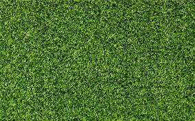 artificial grass texture. Grass Field Moss Green Texture Leaf Grassland Plant Lawn Soil Shrub Family Flooring Artificial Turf