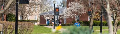 West Virginia Wesleyan College - The Princeton Review College Rankings &  Reviews