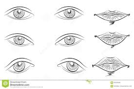 eyes drawings hand drawings of different types of eyes and lips sketch style
