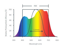 Lighting Metrics Par Ppf Ppfd Photon Efficiency