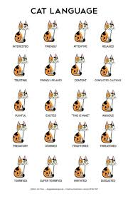 Cat Body Language Chart A More Accurate Chart Of Cat Body Language Album On Imgur