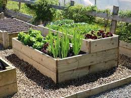 raised vegetable beds stepped level