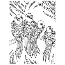 colouring in picture. Beautiful Picture Colouring In Sheets  Art U0026 Craft  Supplies Kidu0027s  Projects Materials School Inside Picture