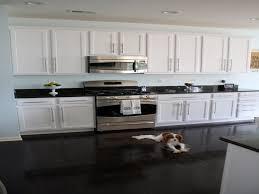 Kitchen With Dark Wood Floors Tag For Dark Kitchen Floors With Dark Cabinets Nanilumi
