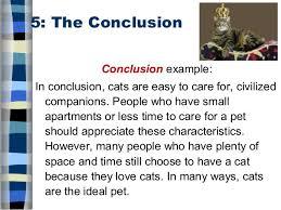 five paragraph essay 16 5 the
