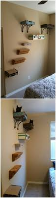 wall mounted cat furniture. Catification Wall Suitcase Beds Shelves Stairs Cat Tree Mounted Furniture