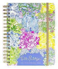 At A Glance Academic Planner 2020 17 Amazon Com Lilly Pulitzer Large Aug 2019 Dec 2020 17