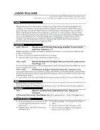 Top Resume Formats Simple Resume Format Template Professional Resume Templates Ideal Resume