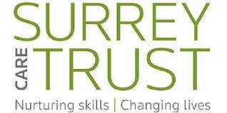 Chief Executive Surrey Care Trust Surrey Chambers