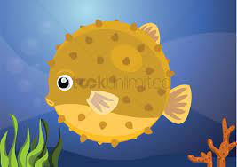 an puffer fish vector image 1265741