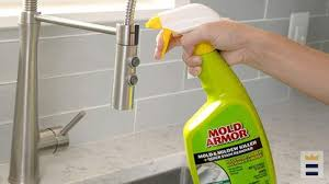 how to choose a mold stain remover for