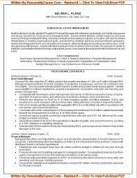 Professional Resume Writer Extraordinary Professional Resume Writer Site Au